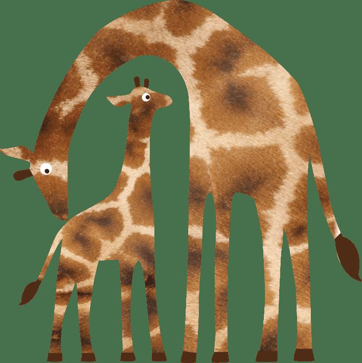 Rothschilds Giraffe Giraffa Camelopardalis Rothschildi Marwell Zoo Cartoon