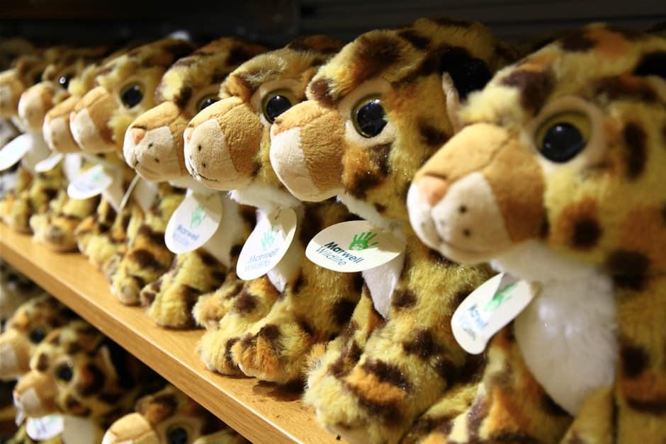 Gift Shop Marwell Zoo 1867