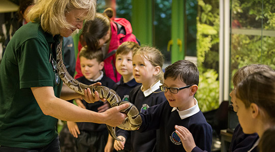 Children on a school trip to Marwell Zoo